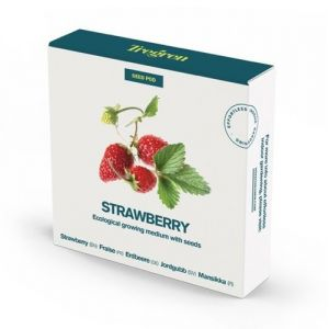 TREGREN Erdbeere Strawberry Seed pots  (6430058280941)