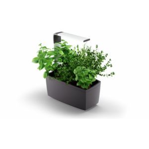 Tregren T6 Pot élégant Gris Rectangle
